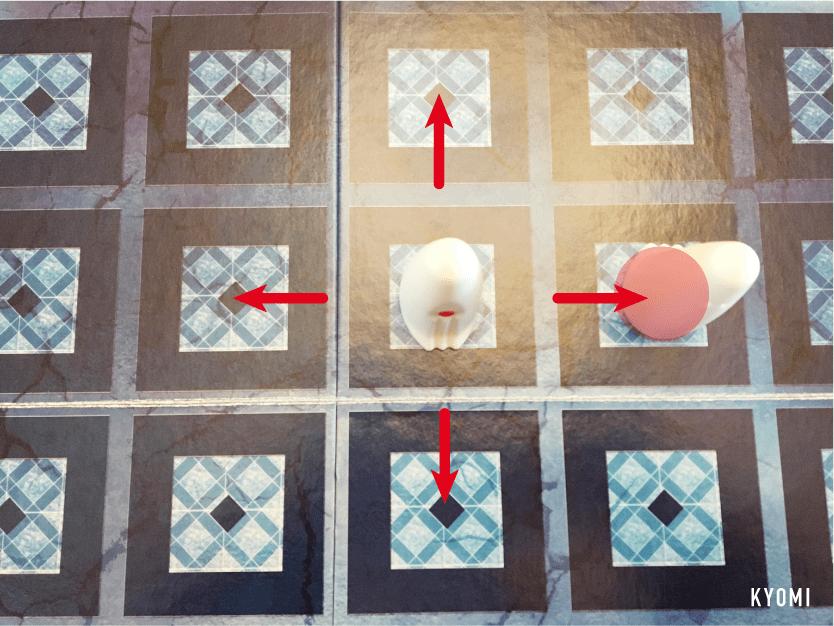 ガイスター-写真-駒の動かし方