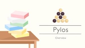 blog_thumbnail_pylos