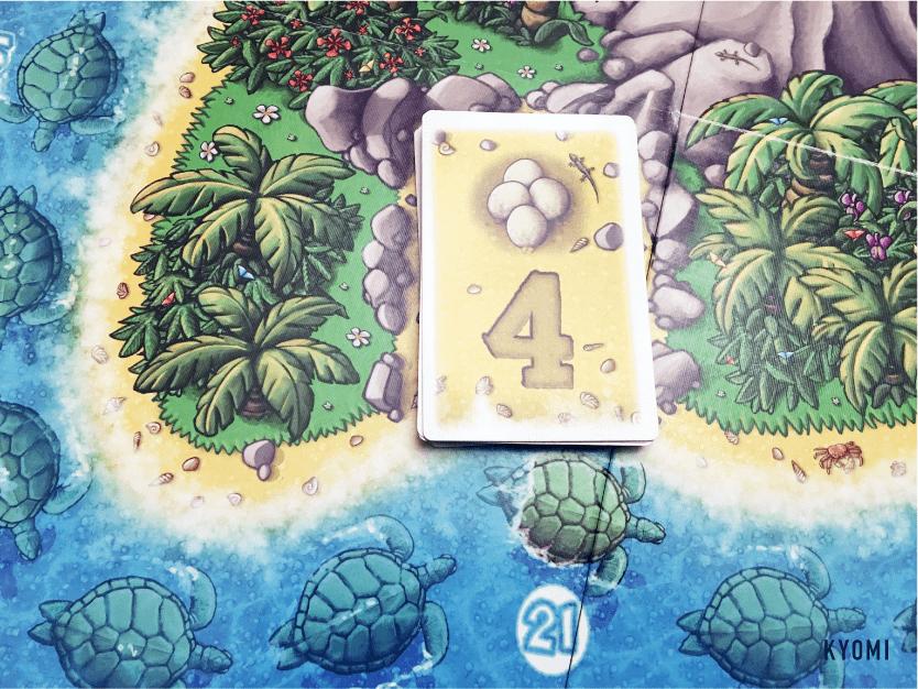 ウミガメの島-写真-セットアップ